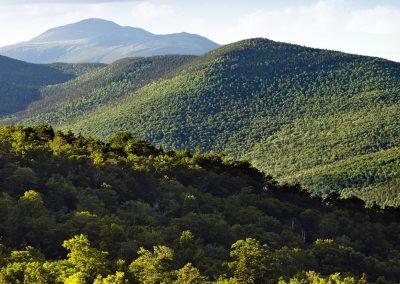 Mount Washington Valley Area
