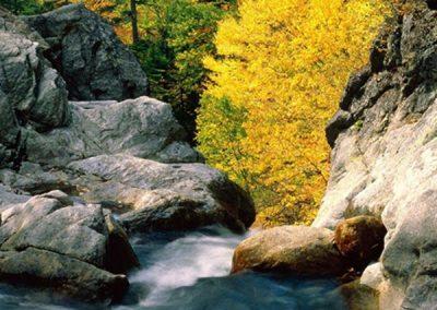 White Mountains Waterfall